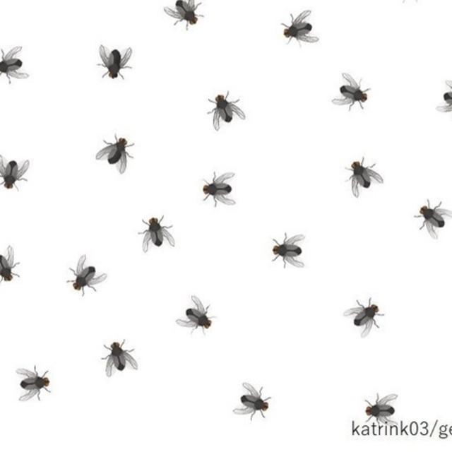 6553172 square 2ab99600 ac7c 4c8e 99b8 34f1918e1155